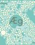 forside æg